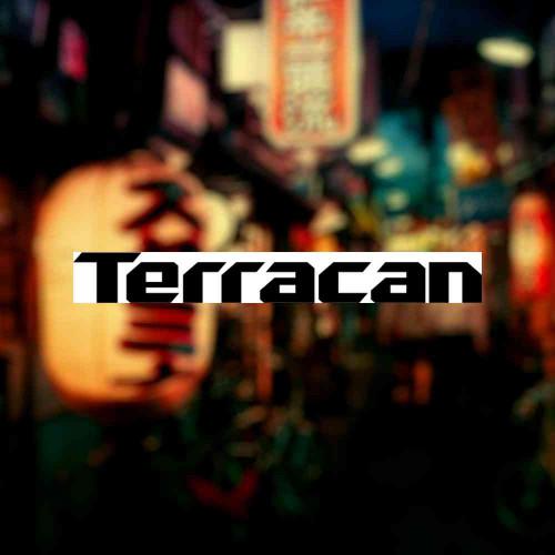 "Наклейка на авто ""Terracan"""