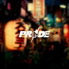 """Наклейка на авто """"Pride"""""""
